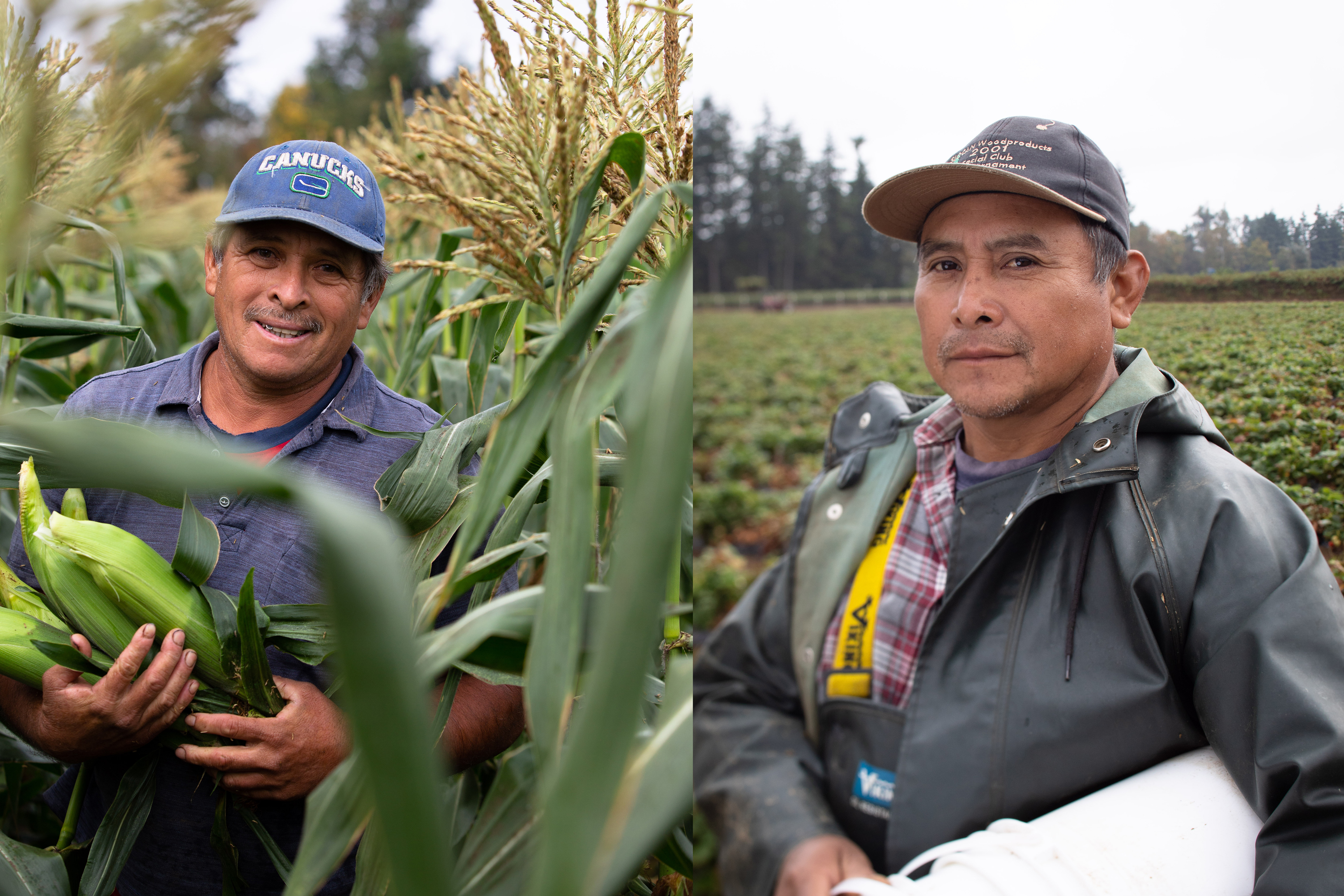 Miguel Lizama, left, and Manuel Can, pictured at Neufeld Farms in Abbotsford, B.C., on Sept. 9, 2019. They are migrant farm workers from Mexico working to send money back to their families. (Maggie MacPherson/CBC)