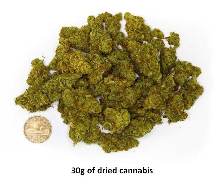 The Saskatoon Police Service has released this photo to illustrate what 30 grams of dried cannabis looks like. This is how much pot it will be legal for pedestrians and drivers to possess in a public place.