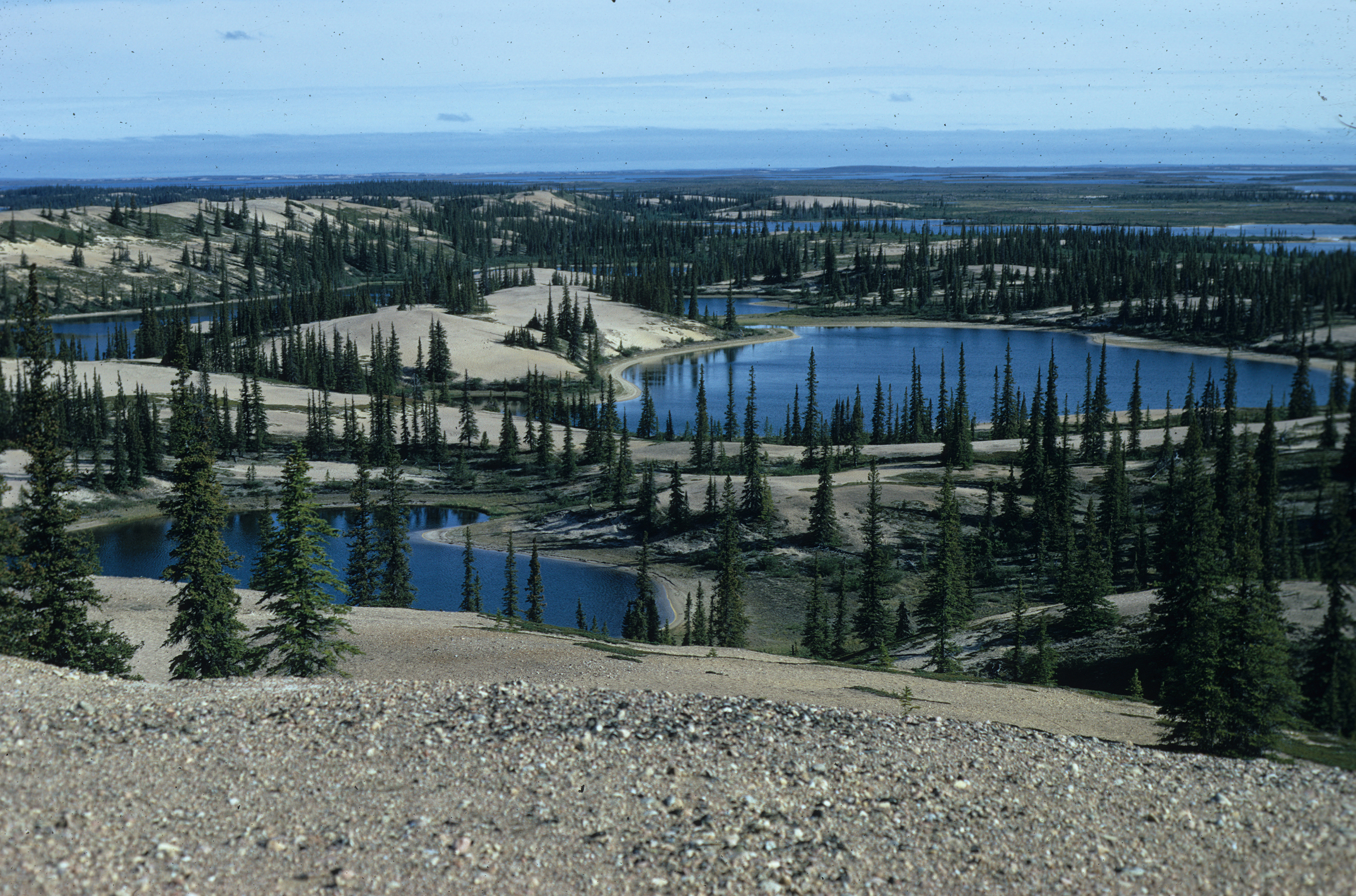 Elk River is in the N.W.T.'s Barren Lands, and is one entrance into the Thelon River. (Submitted by Alex Hall)