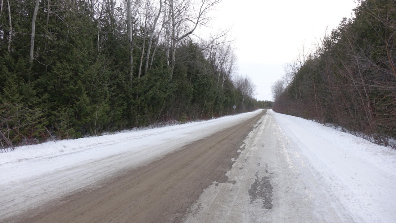 The road between the Allan house and the former Finn homestead on Pigeon Lake. (Julie Ireton/CBC)