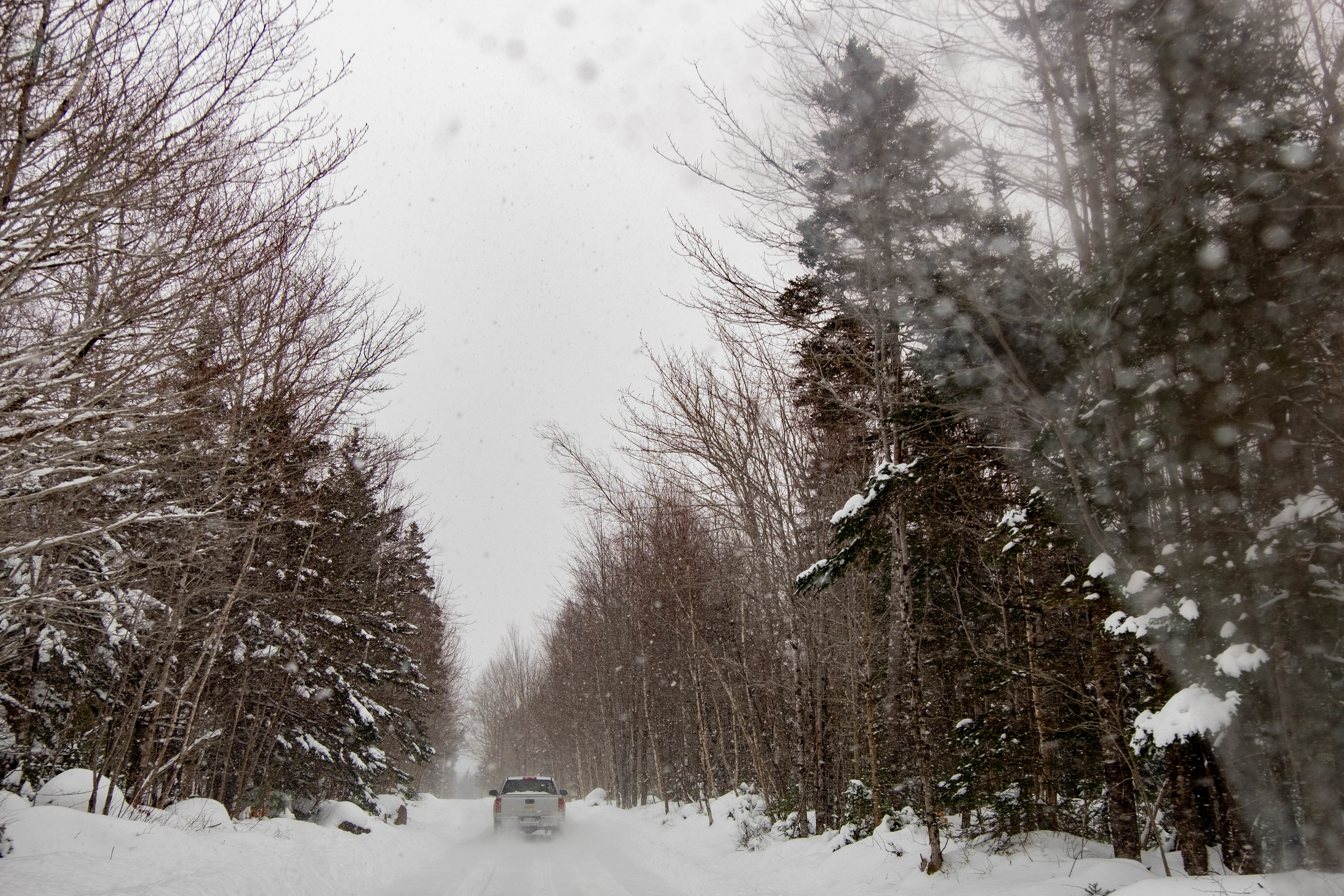 The reserve is located not far from Digby, N.S. (Natalie Dobbin/CBC)
