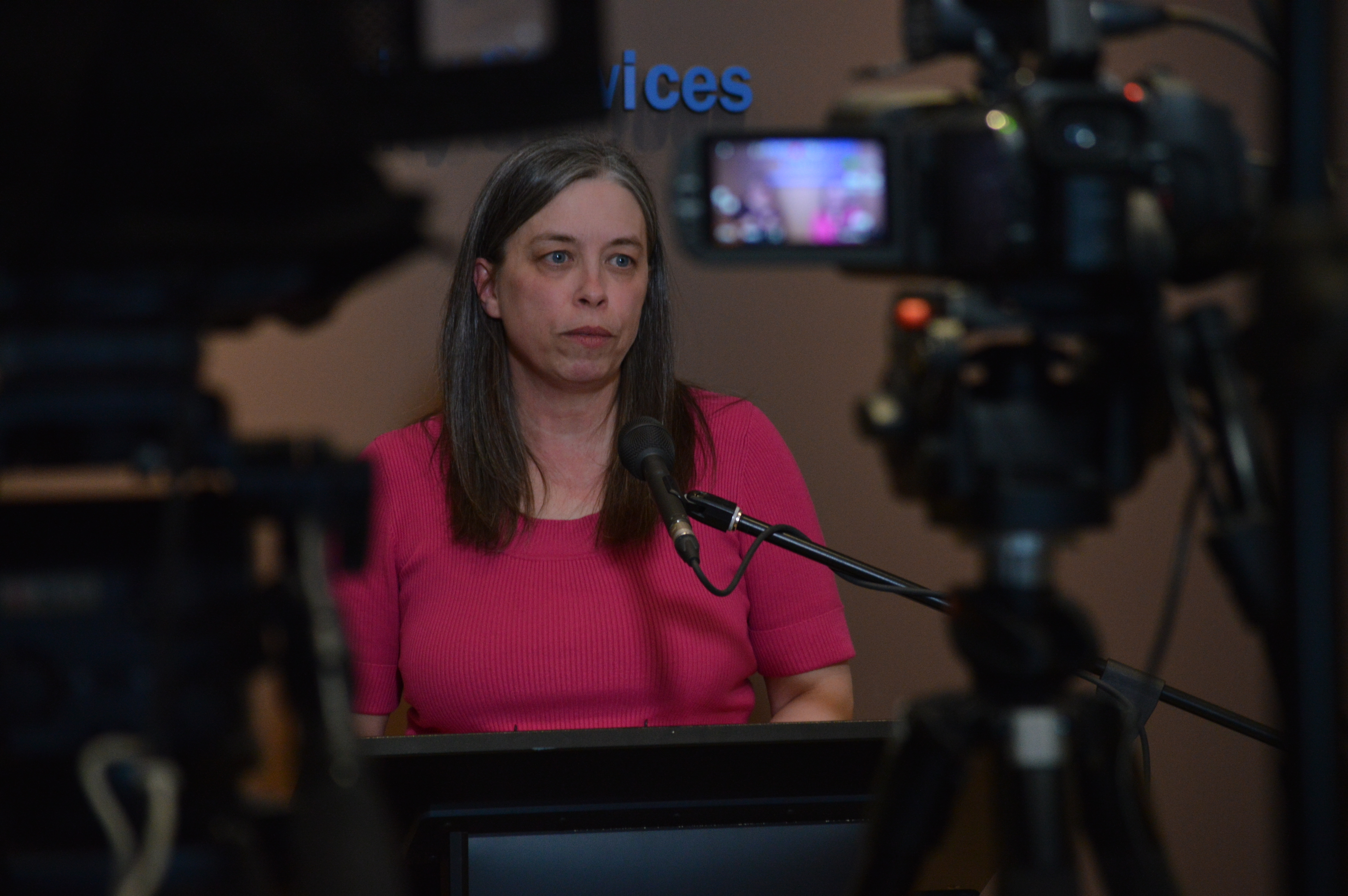 Dr. Janice Fitzgerald is the chief medical officer of health for Newfoundland and Labrador. (Malone Mullin/CBC)