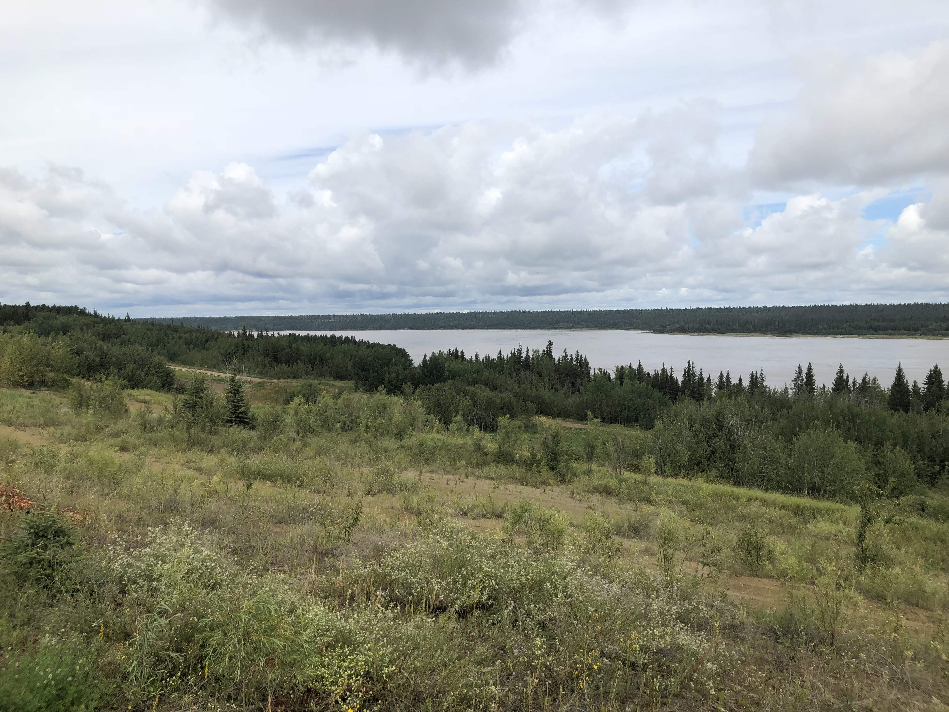 This is the area as it looks today. It used to be dotted with rows of houses in an area known as the Indian Village. (Rachel Zelniker/CBC)