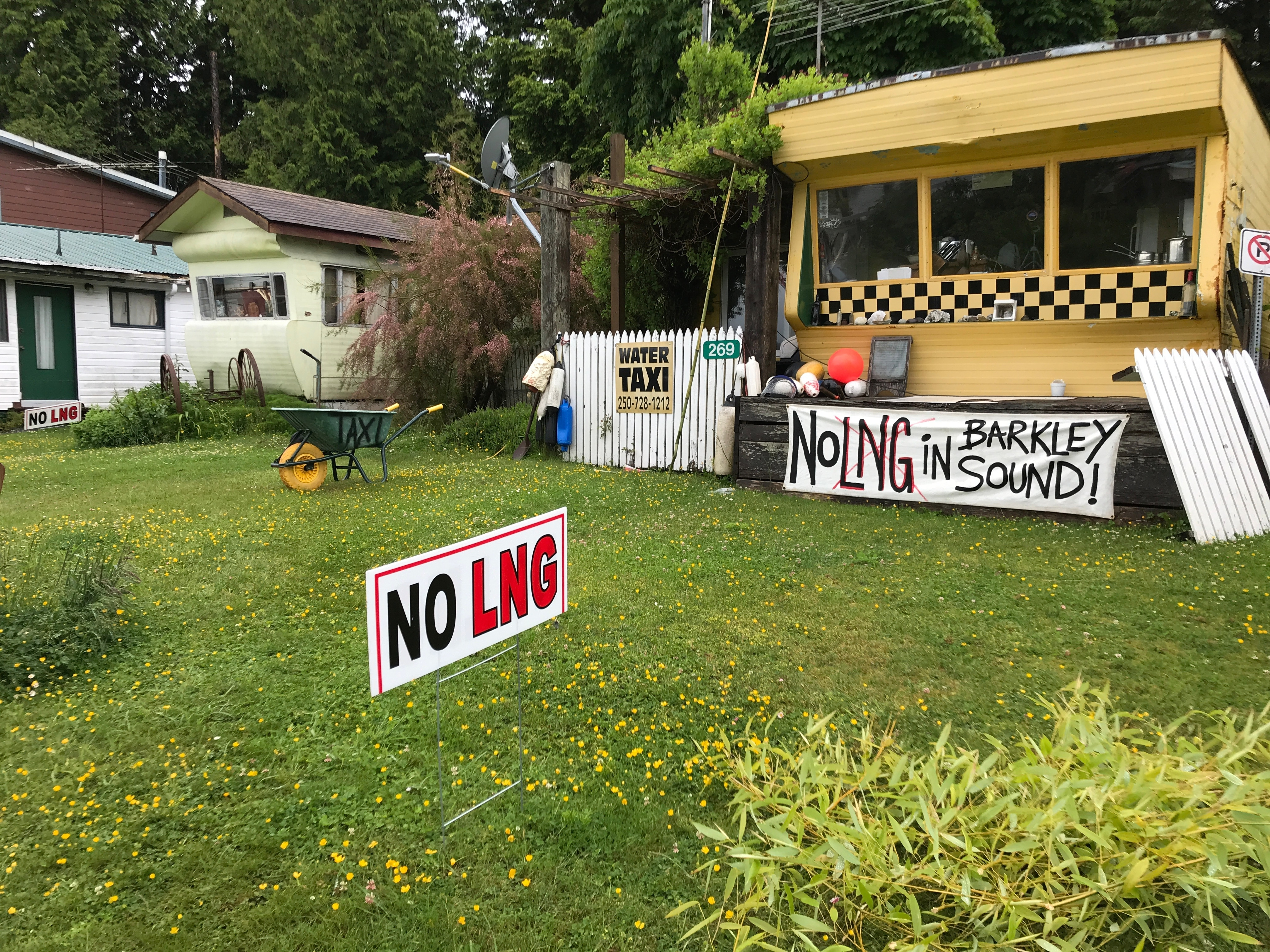 A proposal for a liquified natural gas facility near Bamfield has met with some resistance (Megan Thomas/CBC)