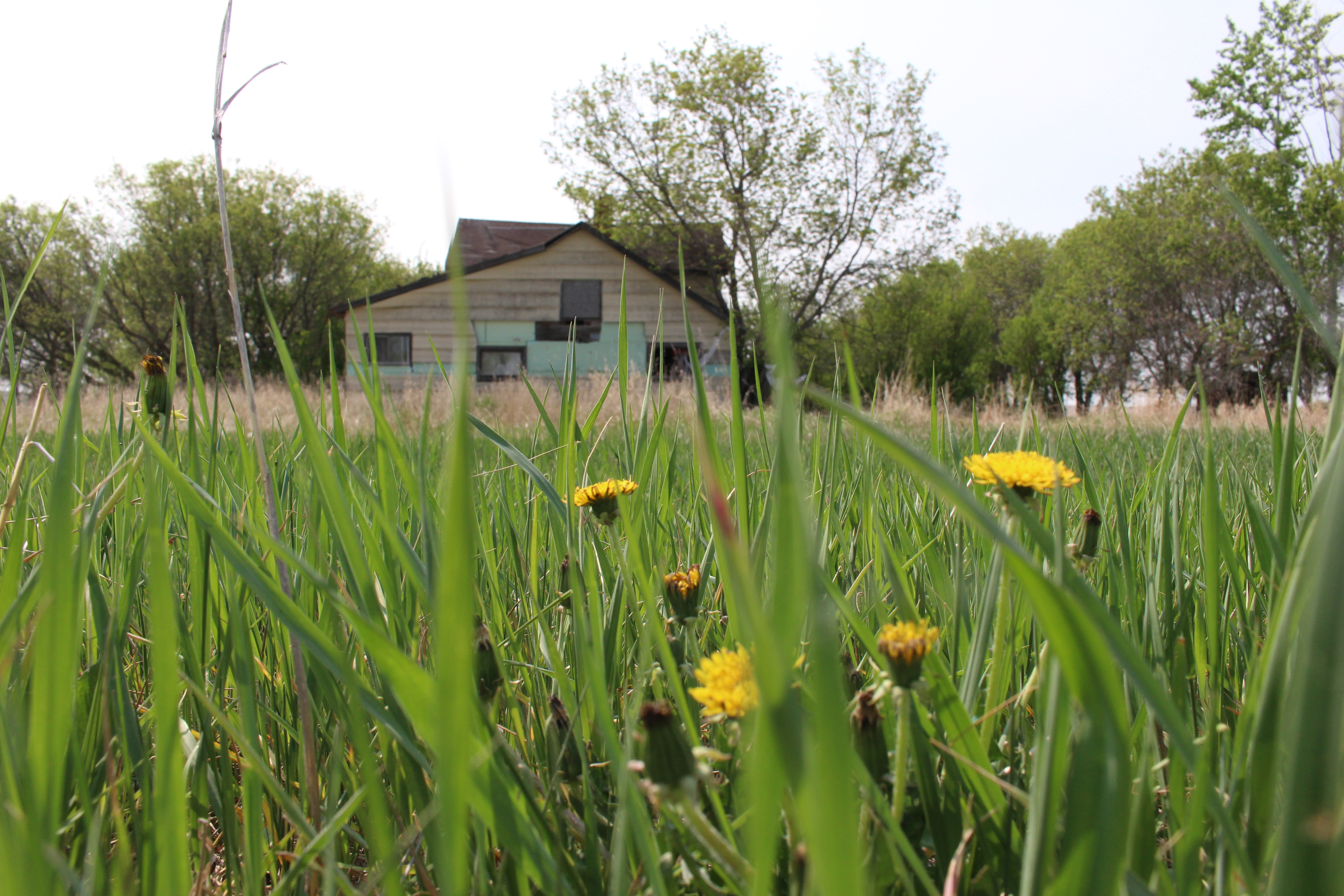 Greg Fertuck's childhood farmhouse. (Victoria Dinh/CBC)