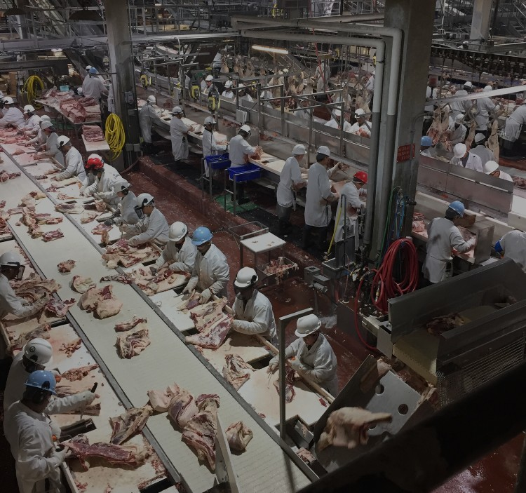 Workers prepare beef to be packaged at the Cargill facility near High River prior to the COVID-19 outbreak. (Submitted by name withheld)