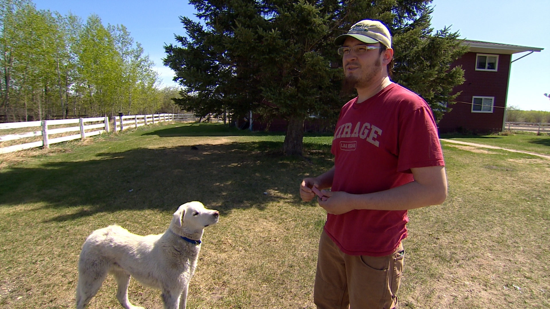 Jordan Bull often leaves his dog, Ryley, free to roam the Maskwacis community. (Sam Martin/CBC)