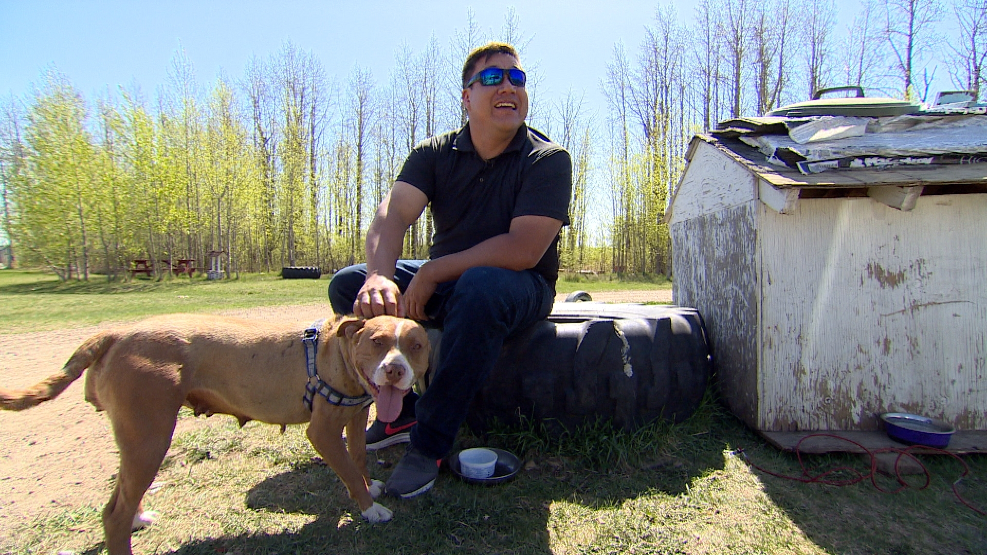 Tribal officer Josh Littlechild has helped introduce new dog regulations on Ermineskin Cree Nation. (Sam Martin/CBC)