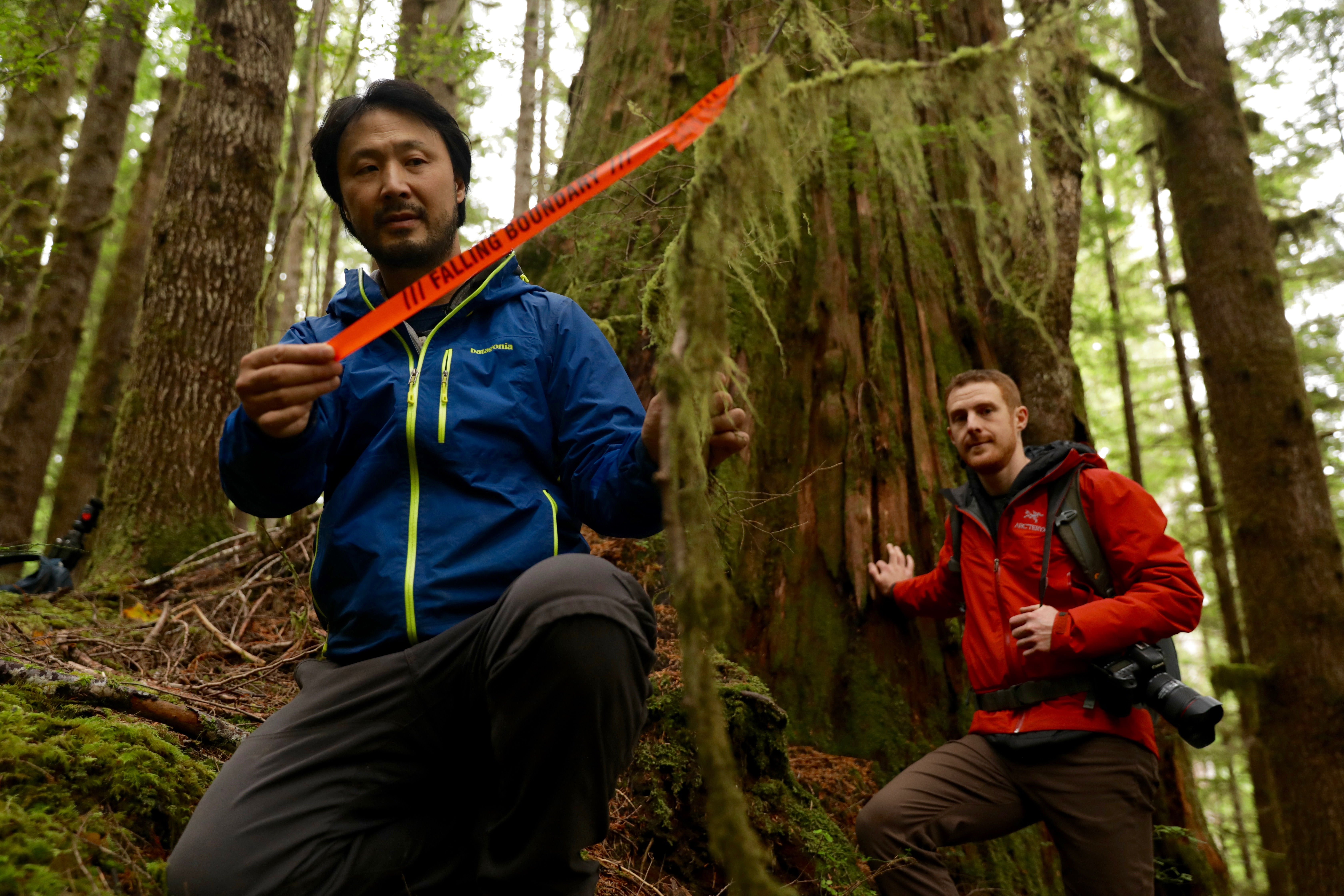 Ken Wu holds a piece of surveying tape used by loggers to mark out cutting areas. (Chris Corday/CBC)