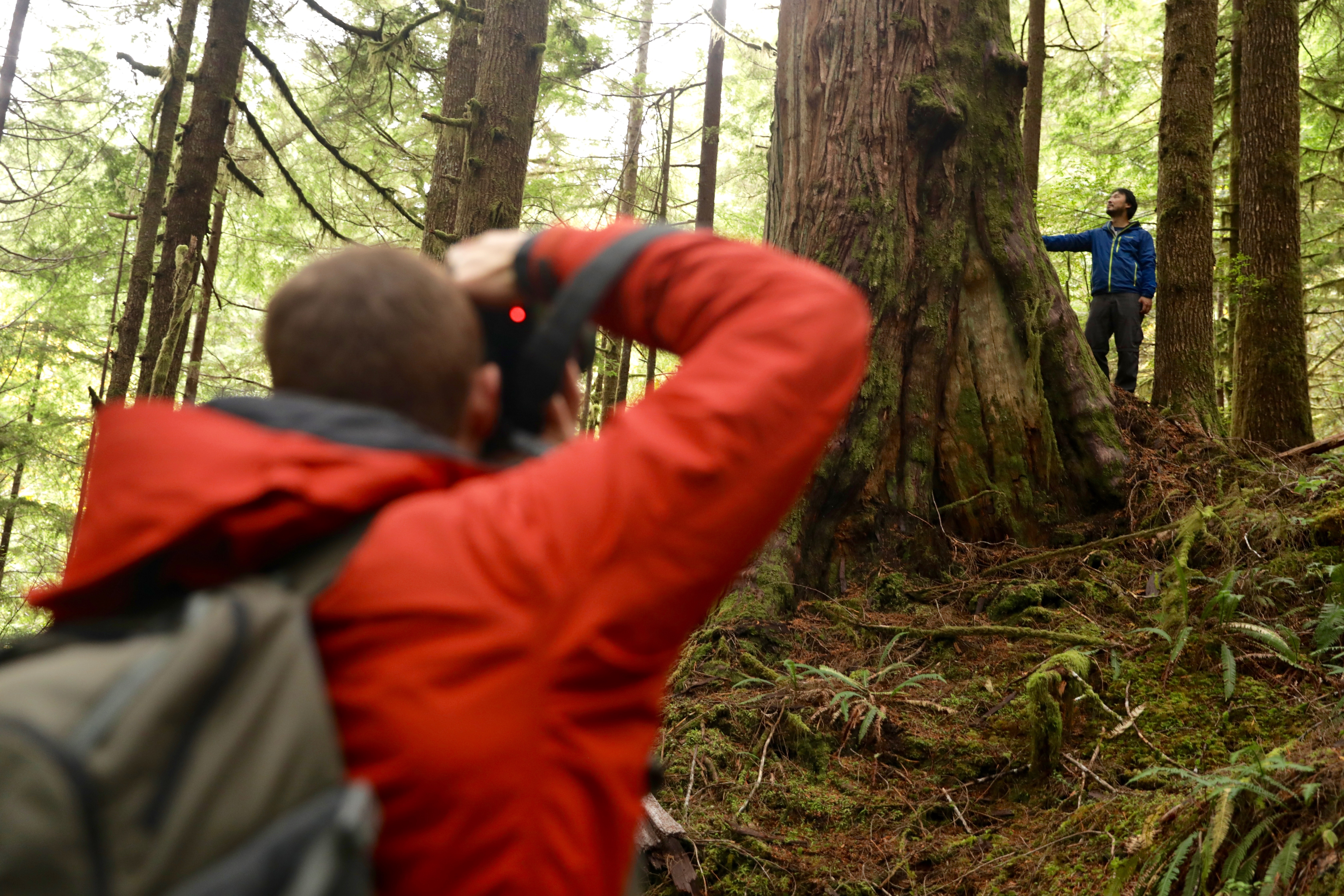 Tj Watt and Ken Wu use photography as a conservation tool for forestry in B.C. (Chris Corday/CBC)