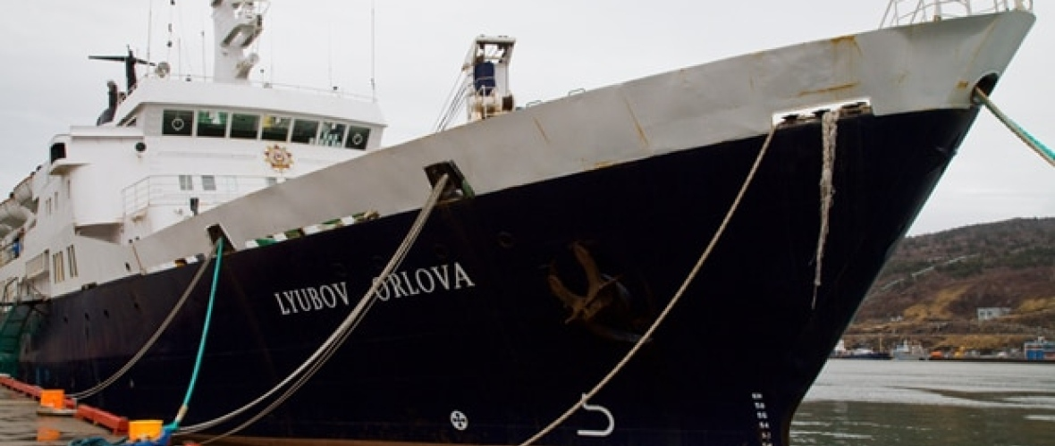The Lyubov Orlova sat abandoned in St. John's Harbour for more than two years after Cruise North's original lawsuit. (John Rieti/CBC)
