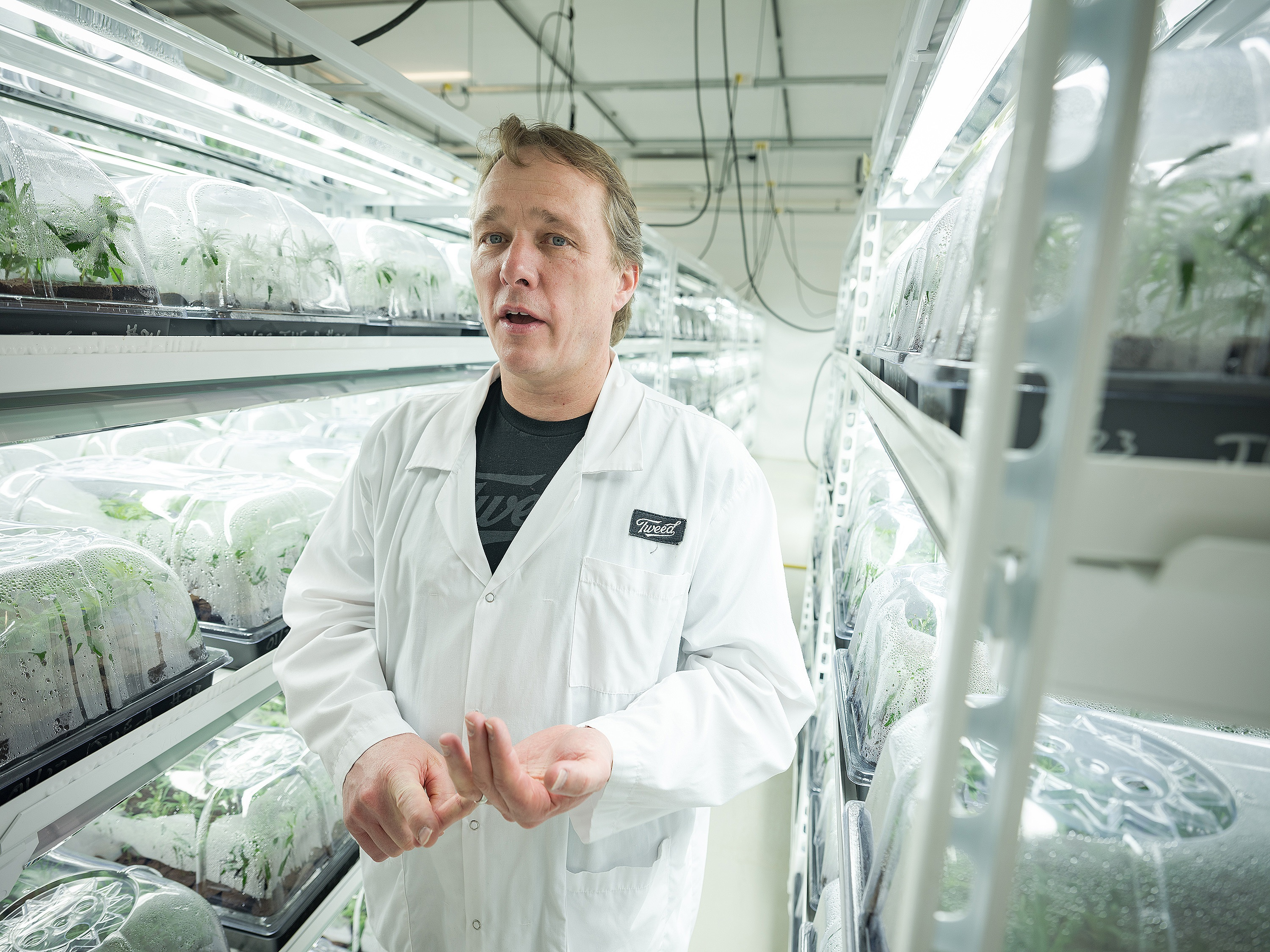 Bruce Linton is the CEO of Canopy Growth, which operates out of the former Hersey chocolate factory in Smiths Falls, Ont. (Evan Mitsui/CBC)