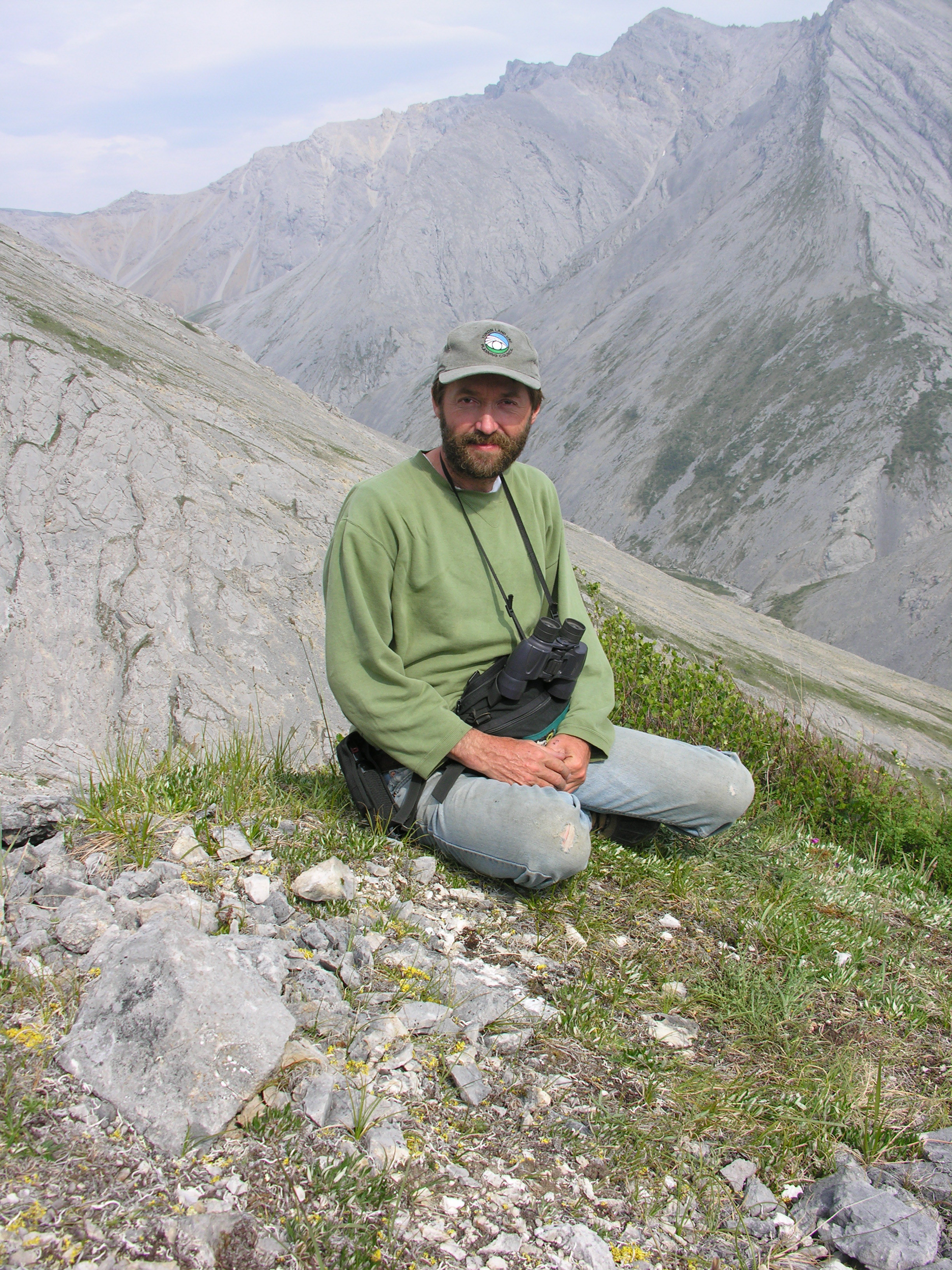 Yukon biologist Mark O'Donoghue says the increased growth of shrubs due to climate change is attracting moose into what used to be primarily caribou habitat. (Submitted by Mark O'Donoghue)