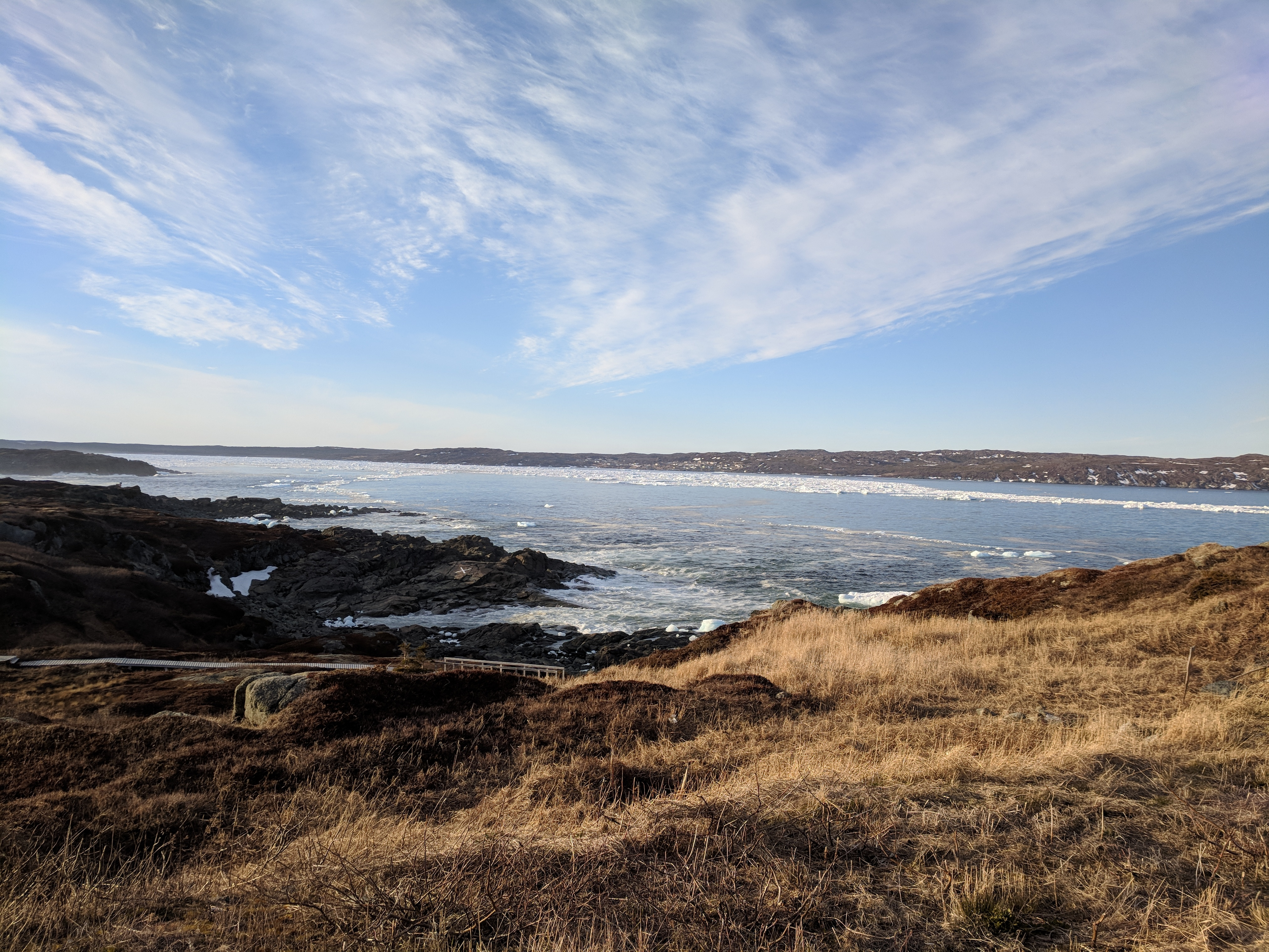 St. Anthony is a town of slightly more than 2,000 people on Newfoundland's northern peninsula. (Lisa Mayor/CBC)