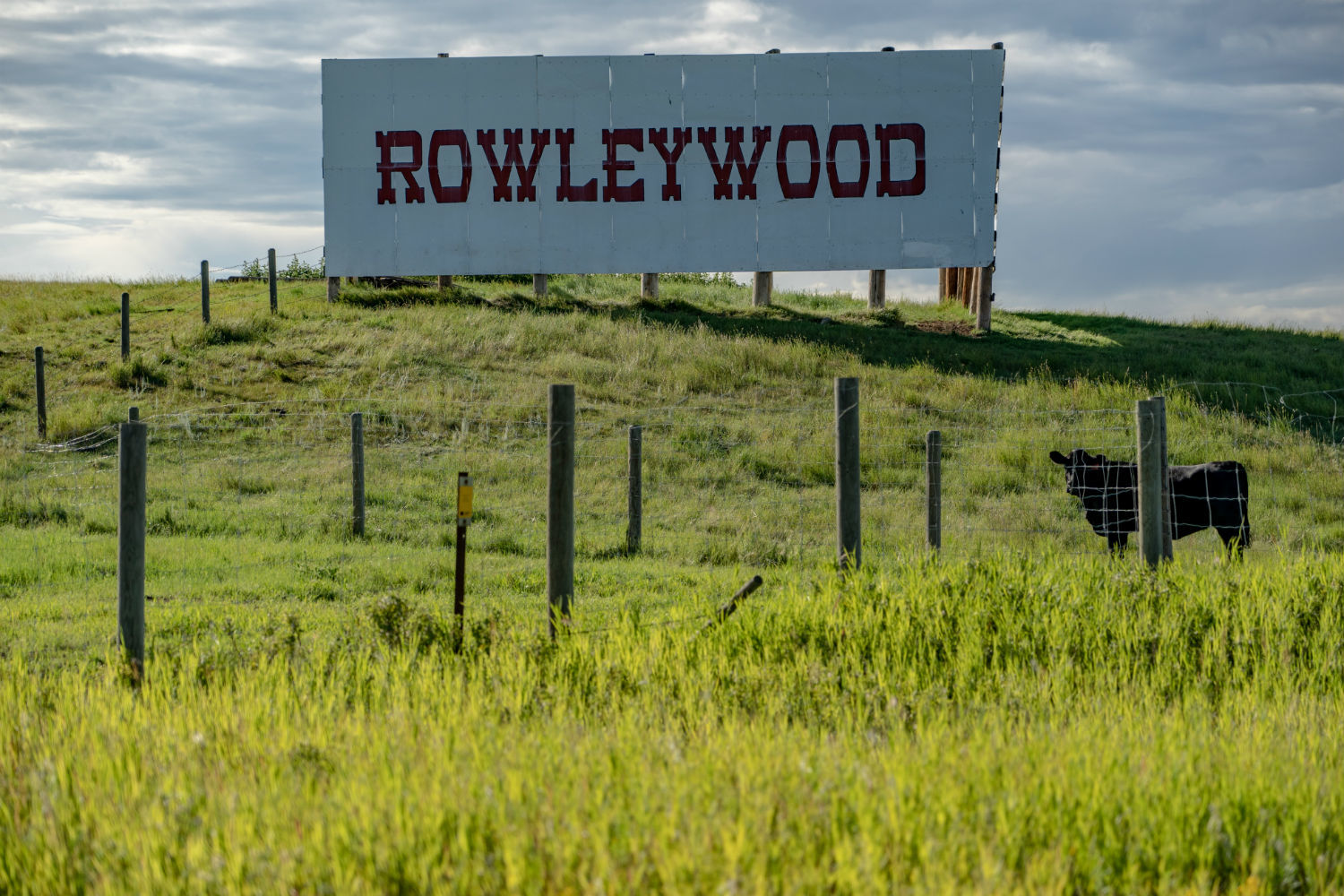 A 'Rowleywood' sign near Rowley, Alta., where Hollywood film productions have come to use the historic town as a movie set. (Vincent Bonnay/Radio-Canada)