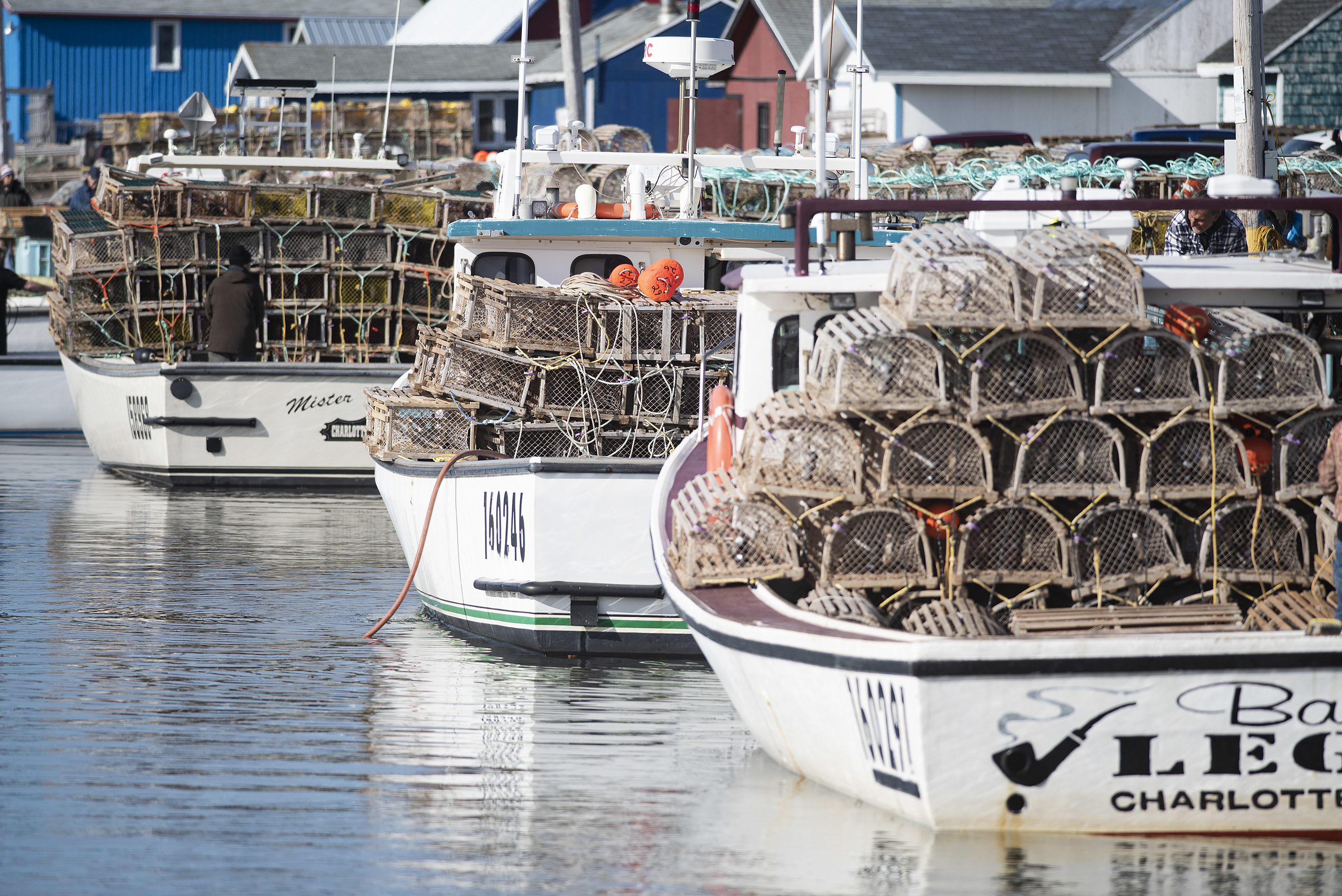 The wharf at North Rustico was jammed with boats and traps. (Brian McInnis)