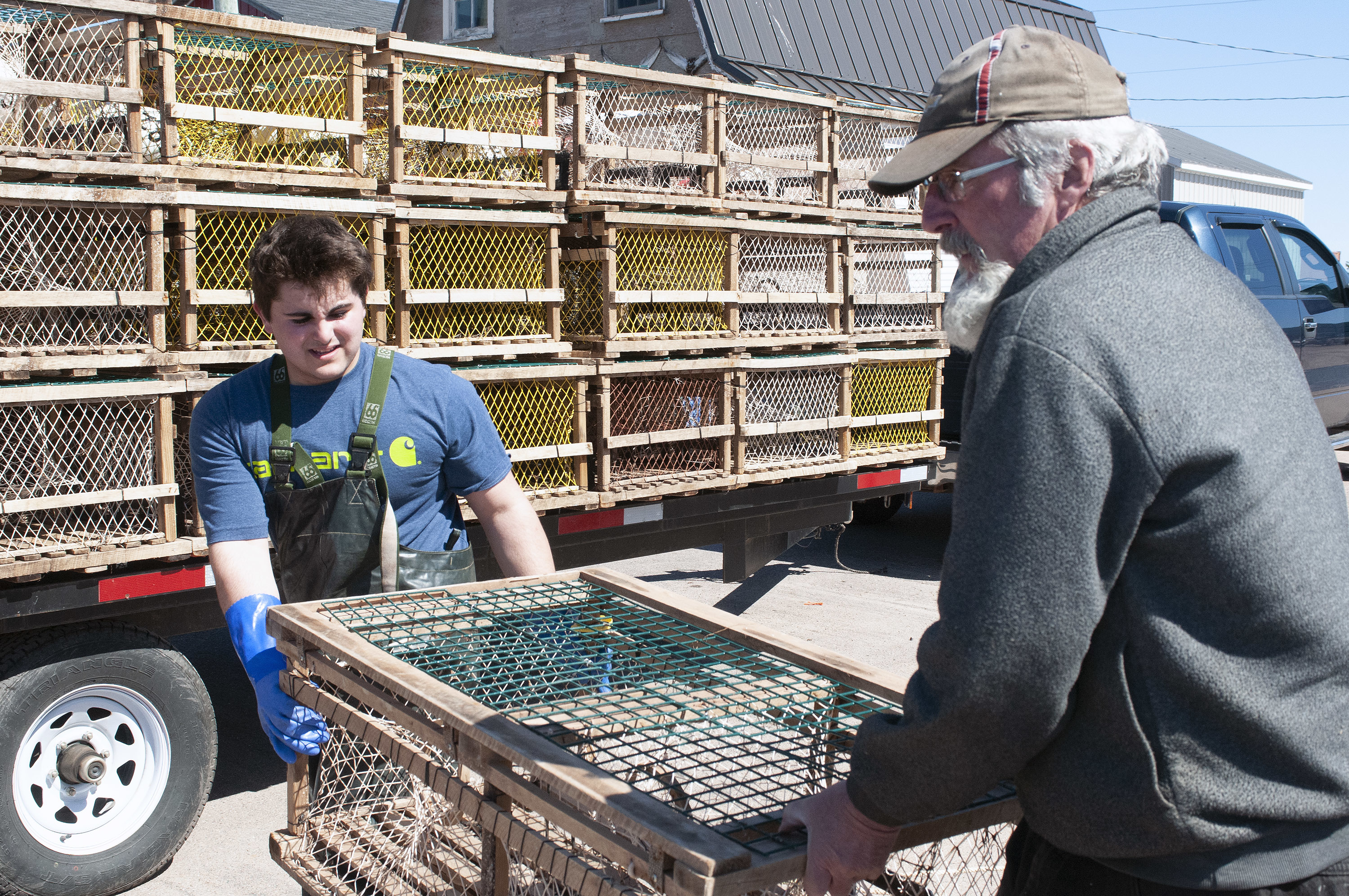 Noah Stanfield, left, and Allan Irving load traps after going out earlier in the morning to set the first load Tuesday at Malpeque. (Brian McInnis/CBC)