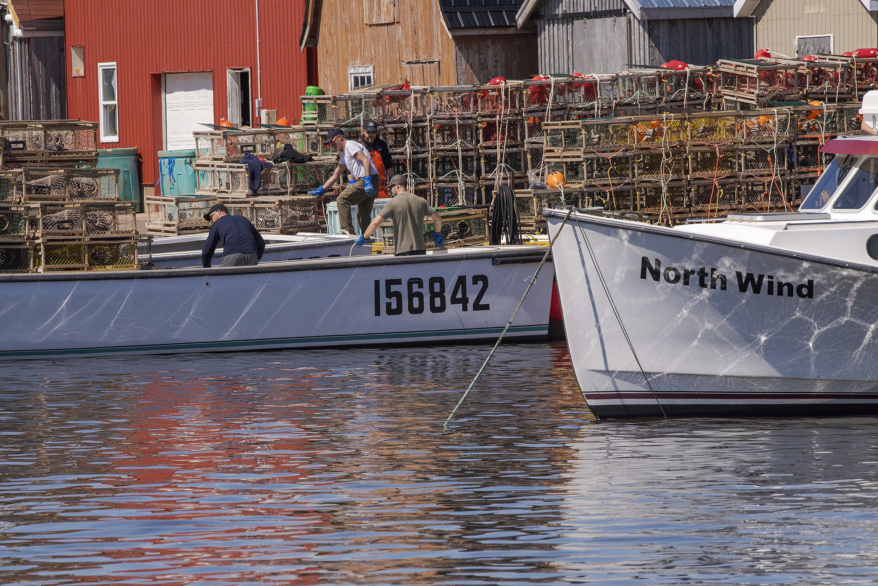 Loading and setting lobster traps is a labour intensive job. The traps have to be first put on the wharf in a specific way and then loaded onto the boat in a specific way. This is done to prevent the ropes and buoys from being tangled when being put in the water. (Brian McInnis/CBC)