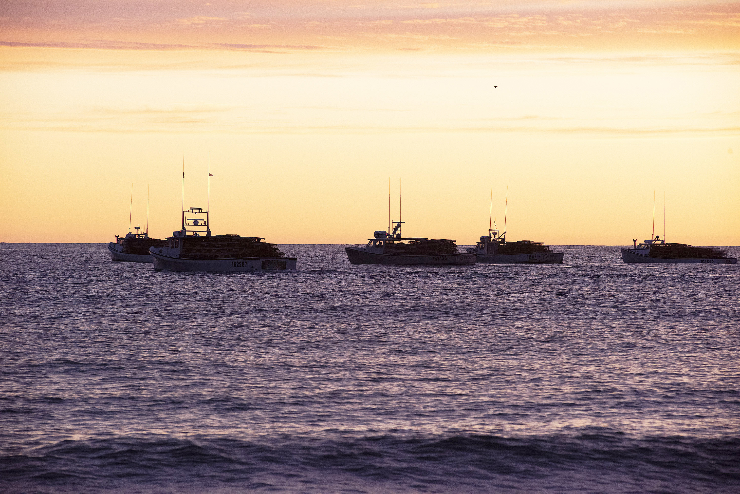 The captains await the radio signal that it is time to begin setting traps. Most captains have their favourite spots and head to them first. (Brian McInnis)