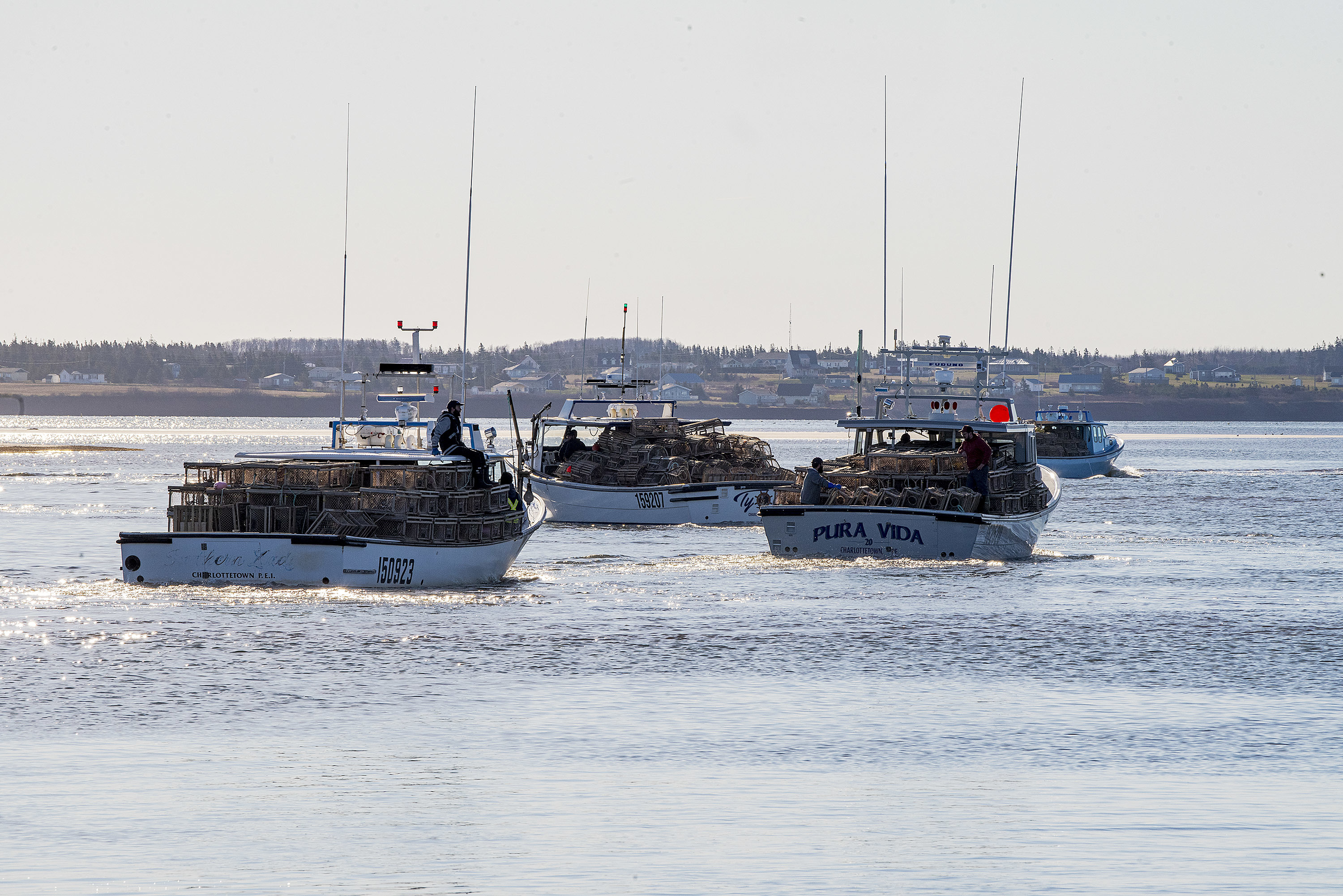 Boats play follow the leader as they head out of the harbour and then through the channel. (Brian McInnis/CBC)