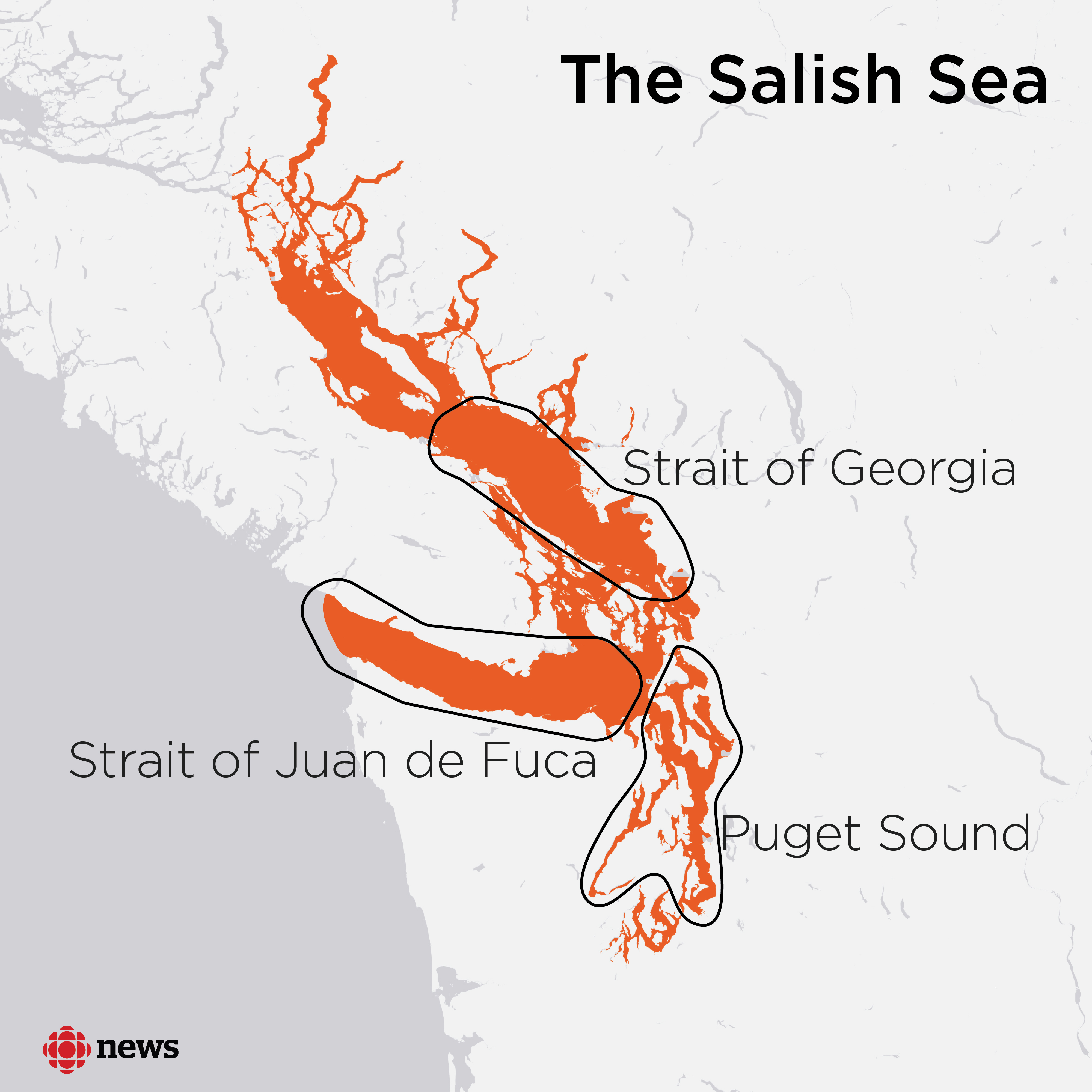 The southern residents are frequently seen in the Salish Sea, a network of waterways touching southwestern British Columbia and northwestern Washington state. It includes the Strait of Georgia, Strait of Juan de Fuca and Puget Sound. (CBC)