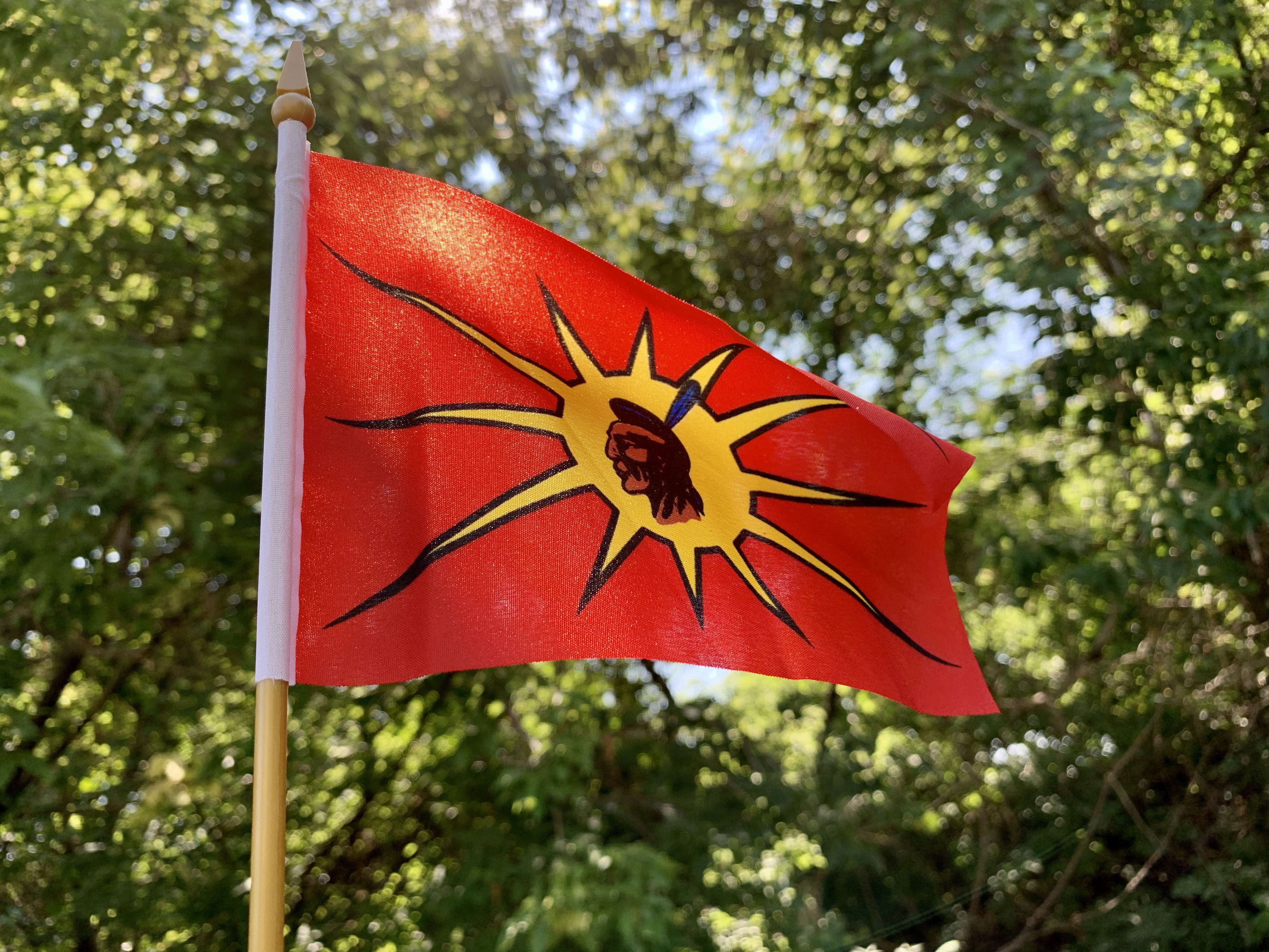 The warrior flag, also known as the unity flag, was created by Kanien'kehà:ka (Mohawk) artist Karoniaktajeh Louis Hall. (Jessica Deer/CBC)