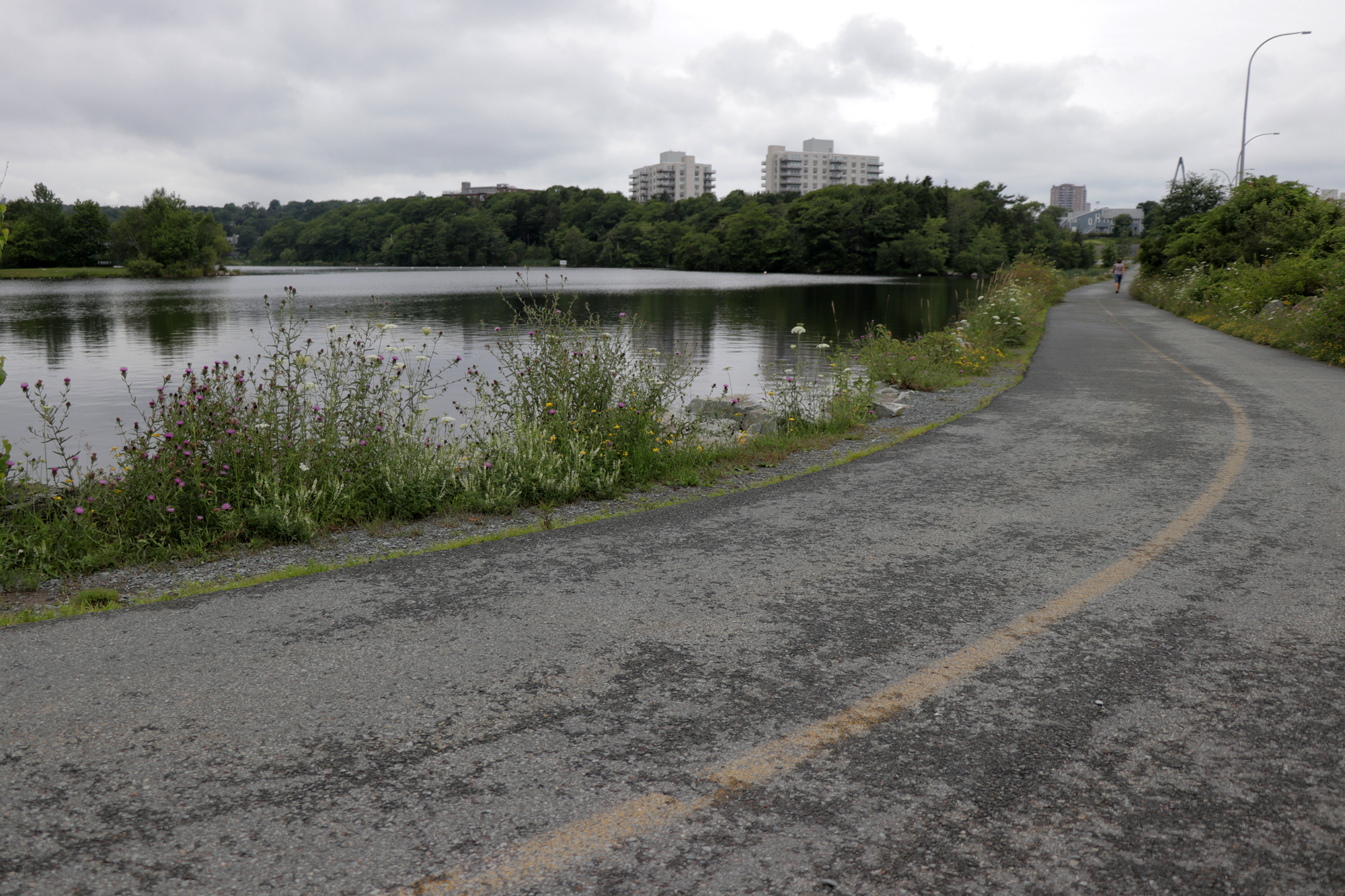 A view of Lake Banook, which Brenda Way walked past shortly before she was killed. (Robert Guertin/CBC)