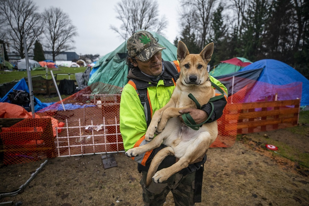 An unidentified camper and his canine friend stand in front of the metal fence put in by B.C. Housing to separate the campers from the rest of the park. (Ben Nelms)