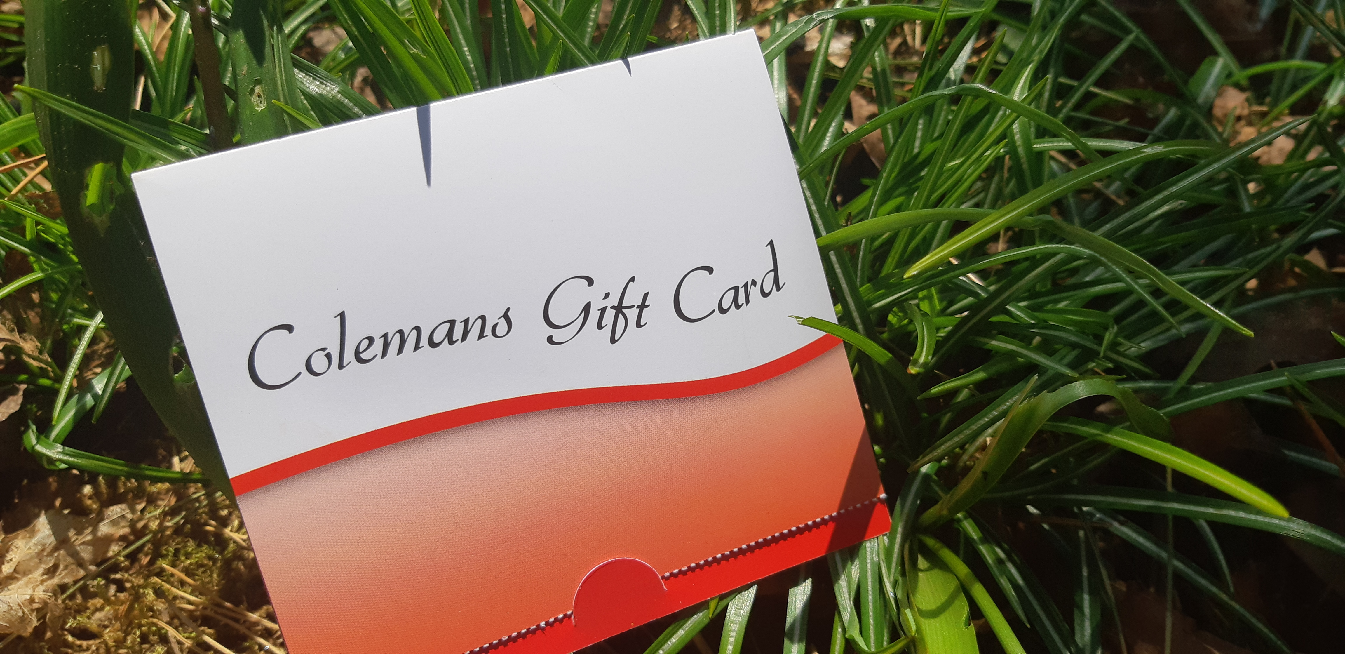Individual gift cards for Colemans supermarkets allow recipients to make their own choices about what they need. (Submitted by Krista Brodeur)
