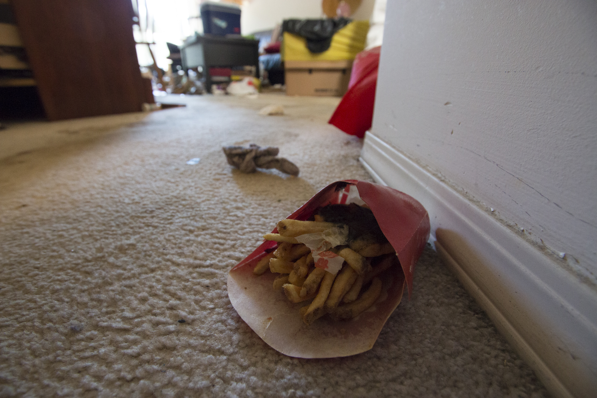Half-eaten takeout was strewn throughout the apartment. (Maryse Zeidler/CBC)