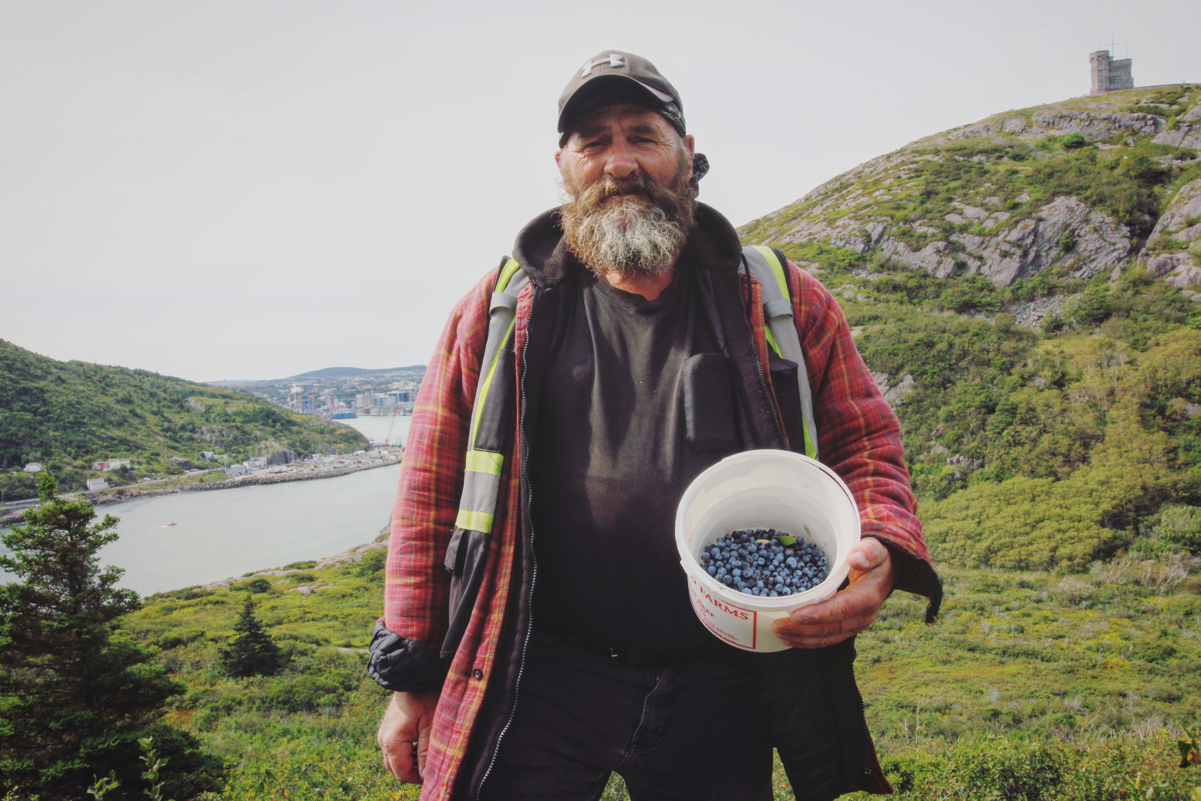 Rowbottom, originally from St. Anthony, calls St. John's the blueberry capital of the island. (Gavin Simms/CBC)