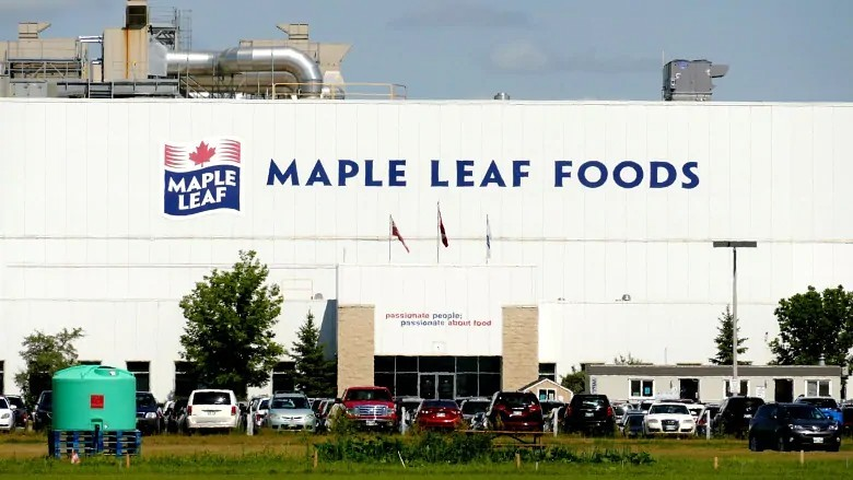 An outbreak at the Maple Leaf Foods plant in Brandon left 70 workers sick. (Riley Laychuk/CBC)