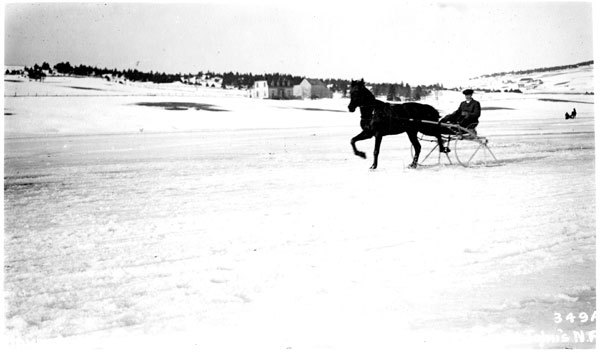 Horse-drawn sleighs racing on the frozen ice of Quidi Vidi in 1922. (The Rooms)
