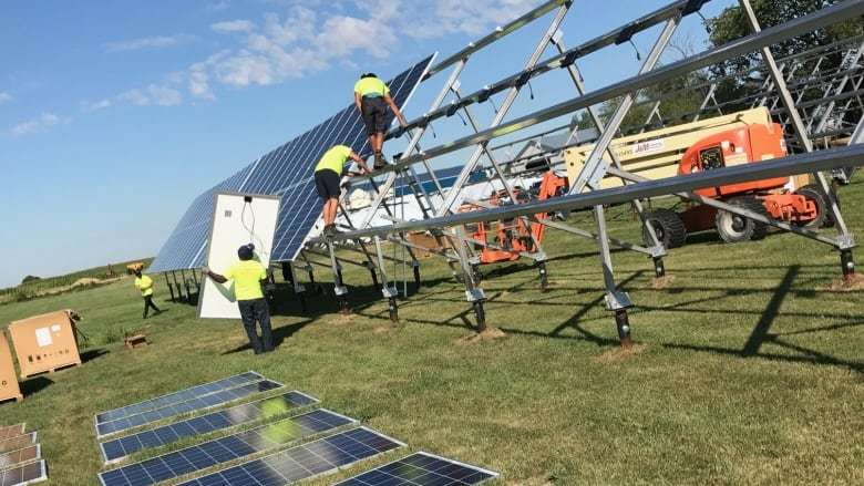 Workers install solar panels at a dairy farm in Otterburne, Man. (Pierre Verriere/CBC)