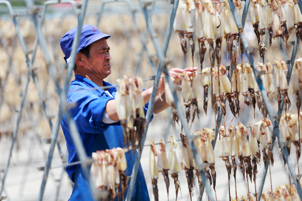 Employees at Zhejiang Fudan Tourism Food Co. dry squid in Zhoushan, China. China effectively controls the global supply of squid, accounting for 50 to 70 per cent of the squid caught in international waters. (Yao Feng/Visual China Group/Getty Images)